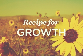 Recipe for Growth